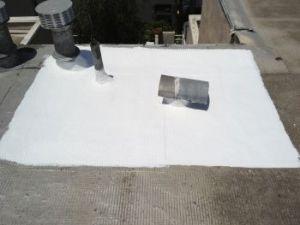 surecoat_roof_coating_repair